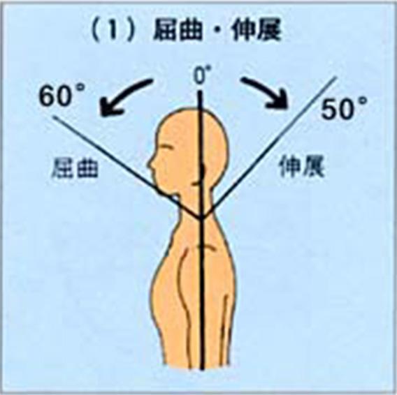 「首の屈曲伸展の可動域」の画像検索結果