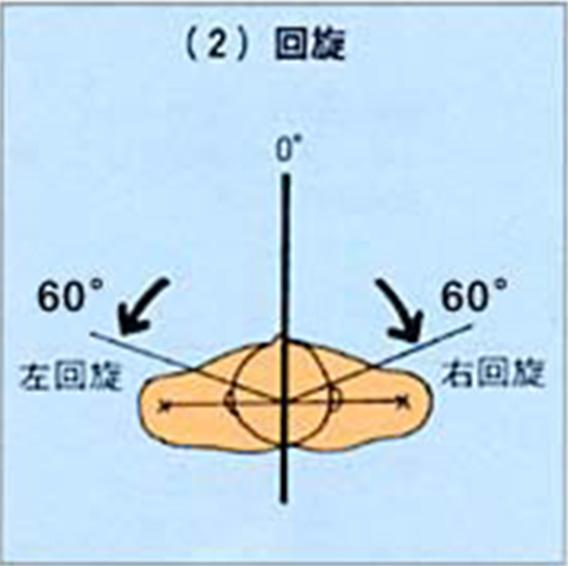 「首の回旋の可動域」の画像検索結果